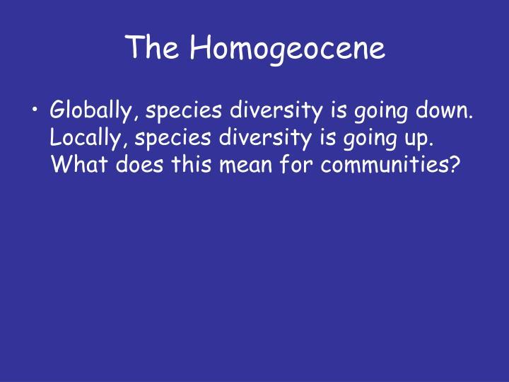 The Homogeocene
