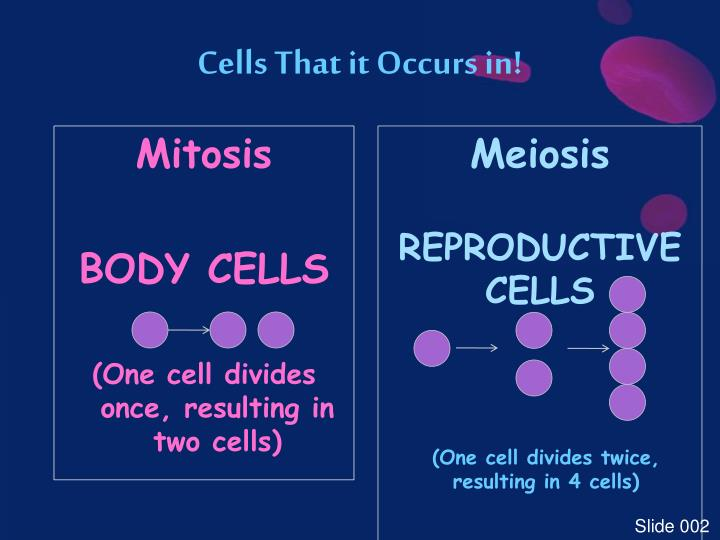Cells That it Occurs in!