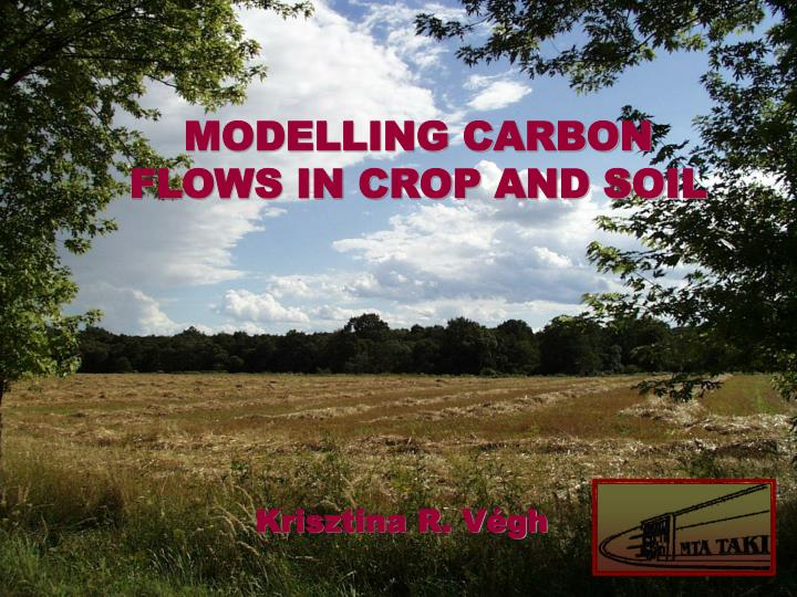 MODELLING CARBON FLOWS IN CROP AND SOIL