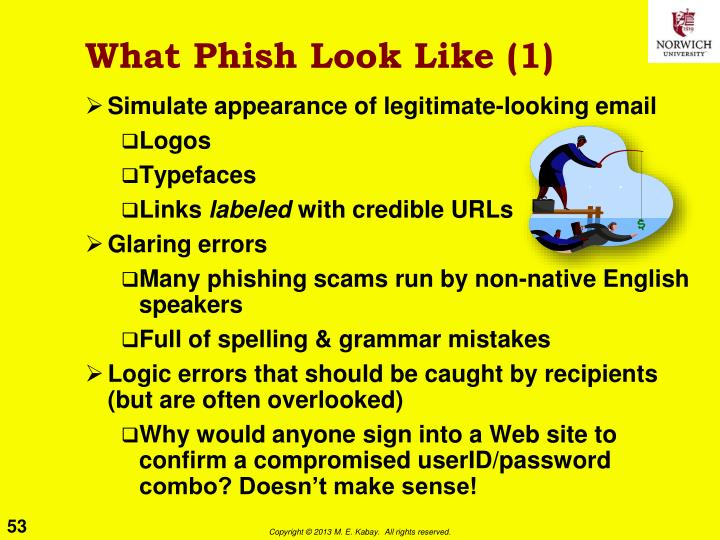 What Phish Look Like (1)