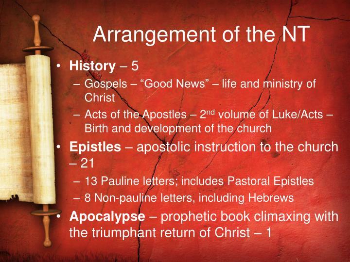 Arrangement of the NT