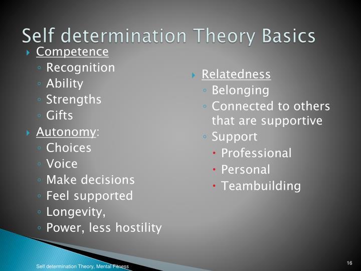 Self determination Theory Basics