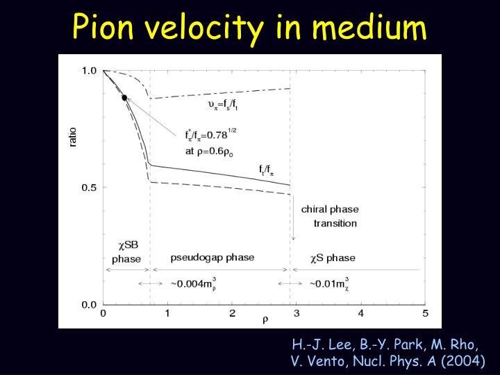 Pion velocity in medium