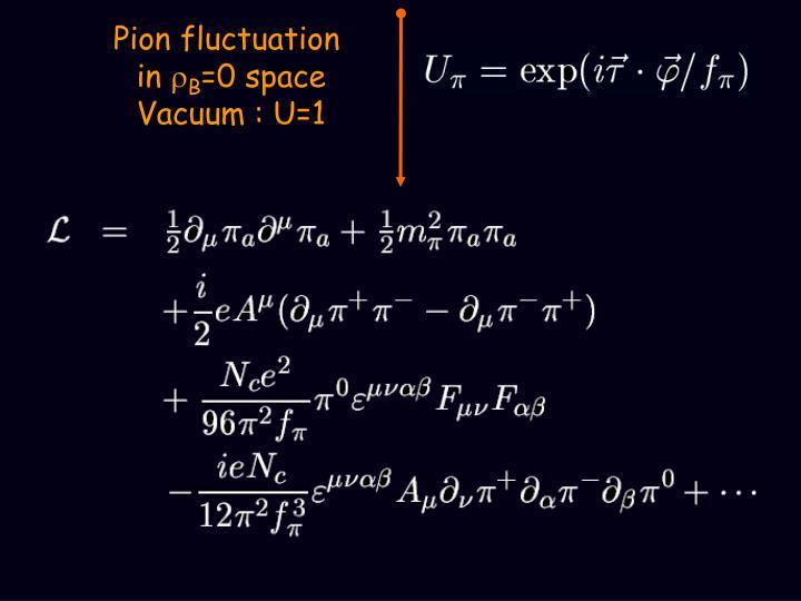 Pion fluctuation
