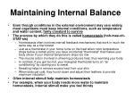 maintaining internal balance