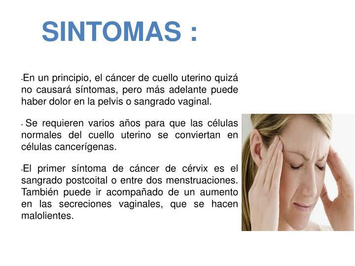 PPT - PAPILOMA UTERINO (cáncer de cuello de útero) CHAIMA HEJJAJ ...