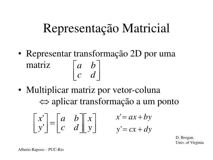 Representação Matricial