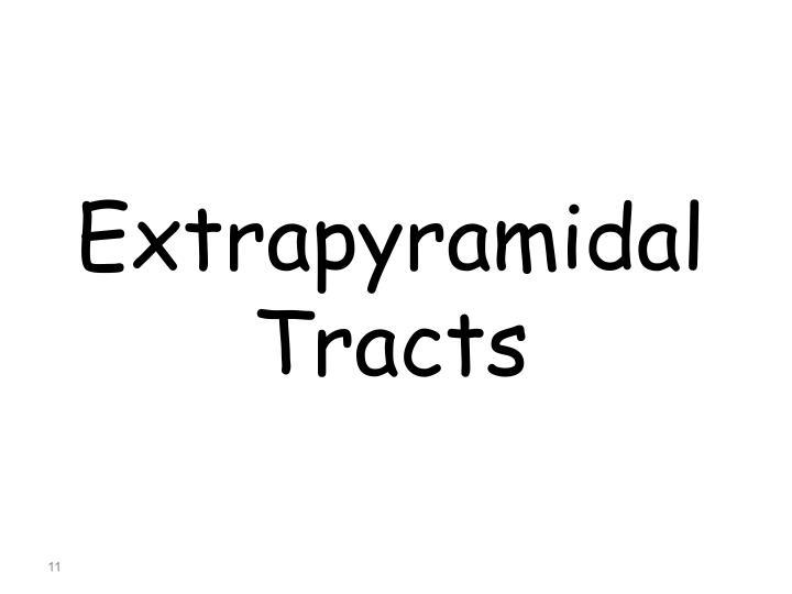 Extrapyramidal Tracts