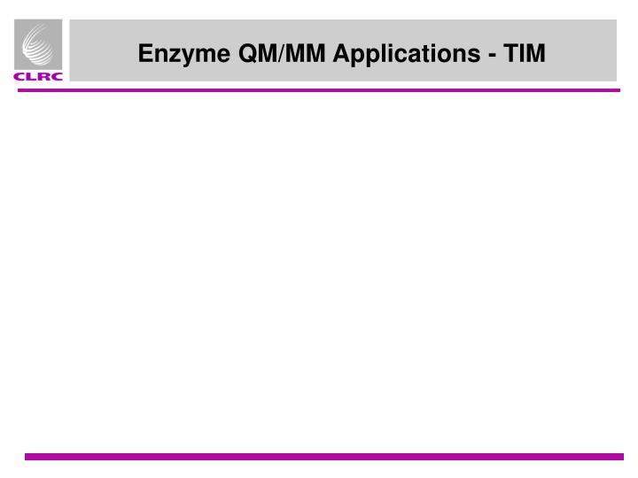 Enzyme QM/MM Applications - TIM