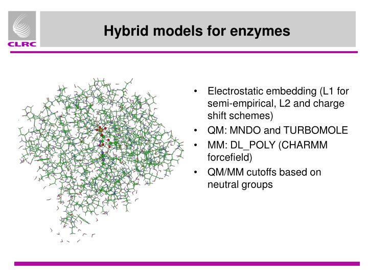 Hybrid models for enzymes