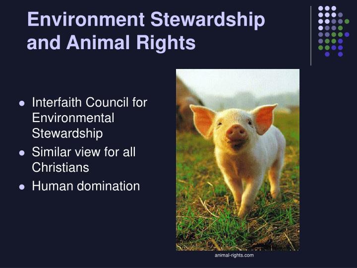 Environment Stewardship and Animal Rights
