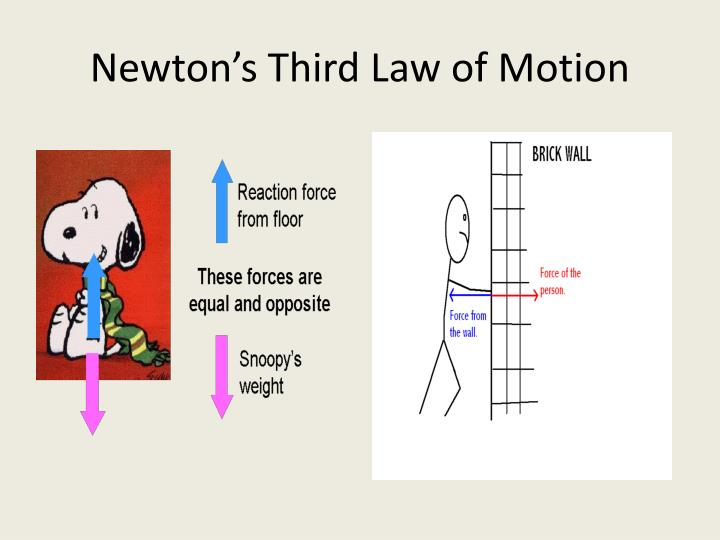 newton s third law of motion Teachers: this material examines newton's third law of motion in a way that will help you teach the law to your students the photocopy-ready student activities pages will give students the opportunity to learn aspects of the third law in a way that they will find interesting and fun.