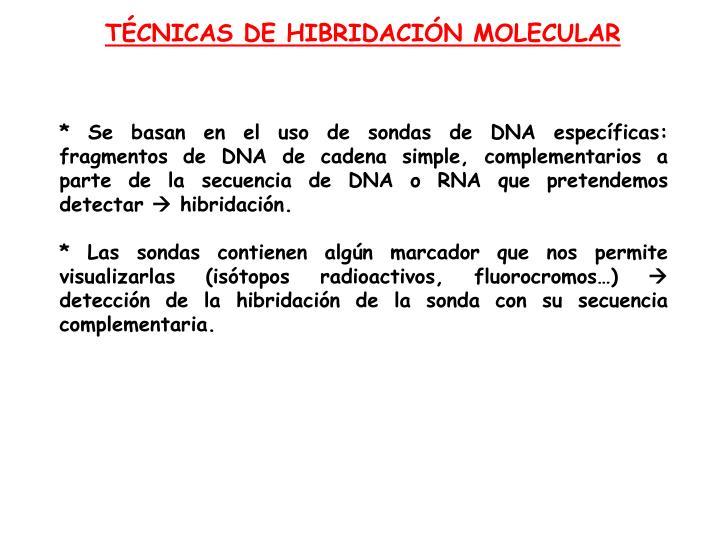 TÉCNICAS DE HIBRIDACIÓN MOLECULAR