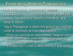 estimating animal populations