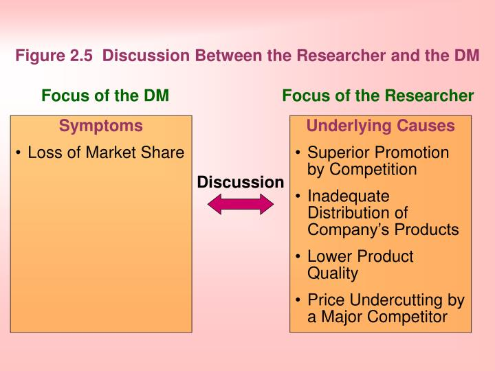 Figure 2.5 Discussion Between the Researcher and the DM