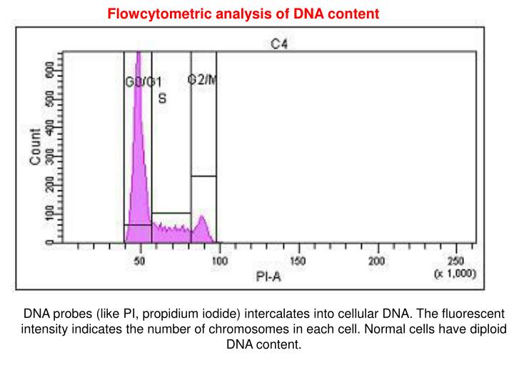 Flowcytometric analysis of DNA content