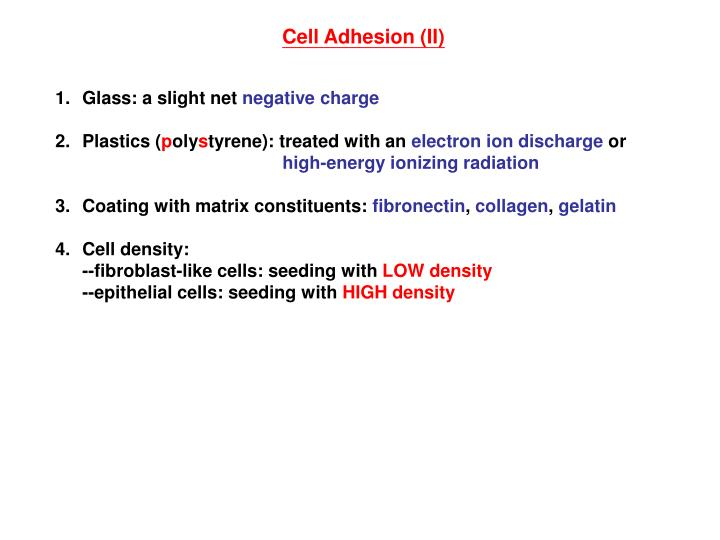 Cell Adhesion (II)