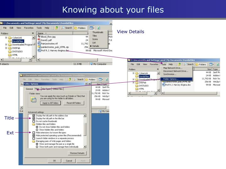 Knowing about your files