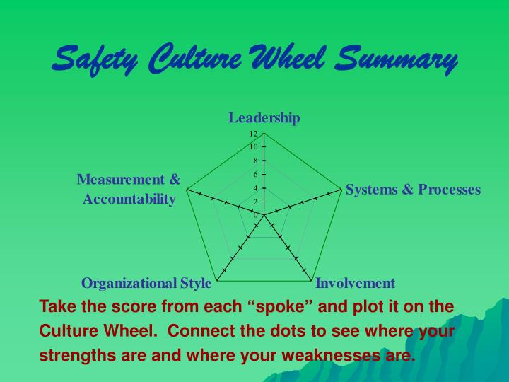 Safety Culture Wheel Summary