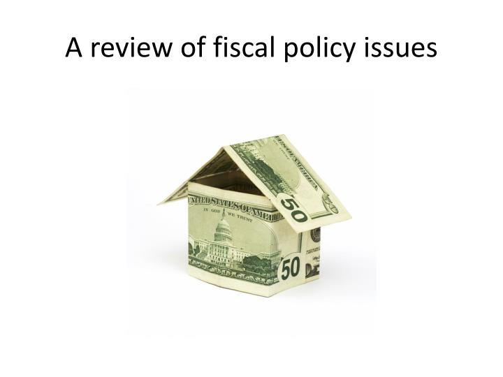 A review of fiscal policy issues