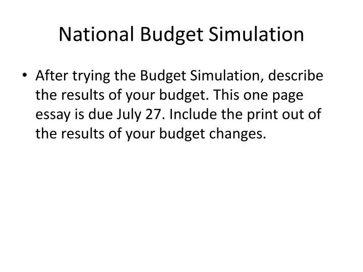 National Budget Simulation