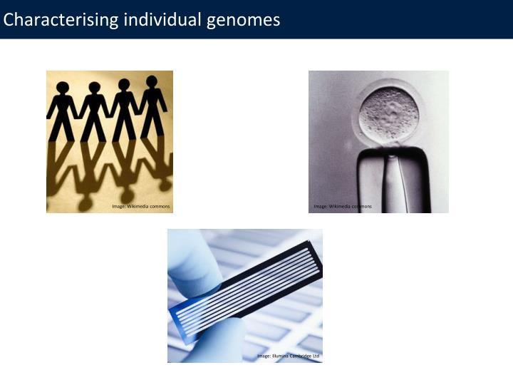 Characterising individual genomes