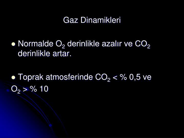 Gaz Dinamikleri