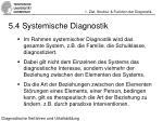 5 4 systemische diagnostik
