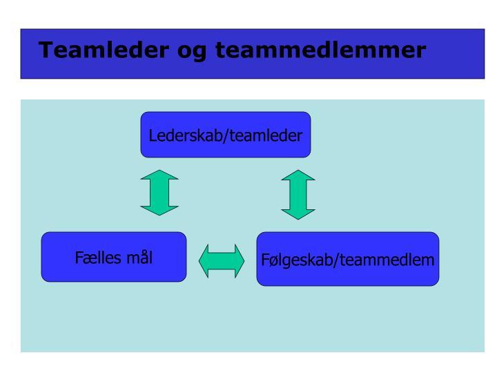 Teamleder og teammedlemmer