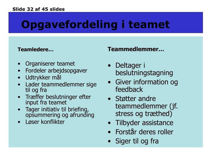 Teamledere…