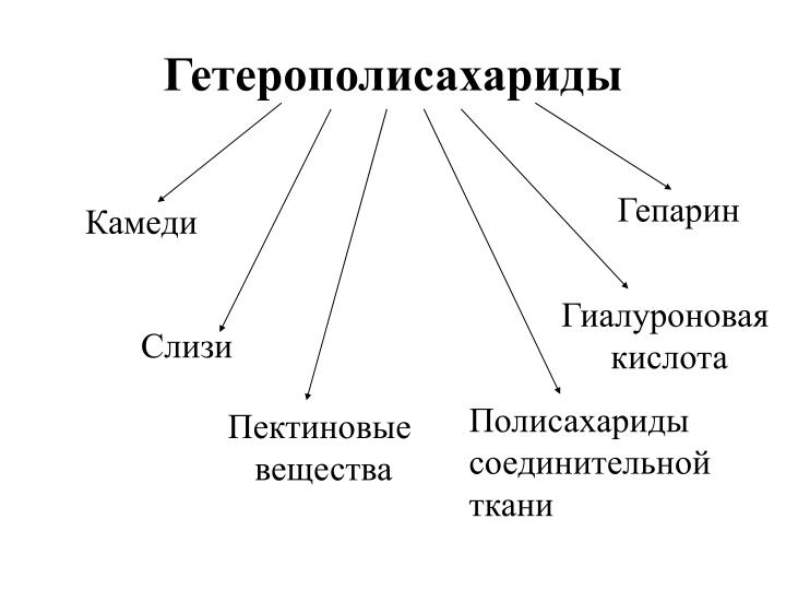 Гетерополисахариды