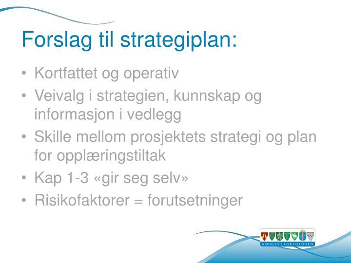 Forslag til strategiplan: