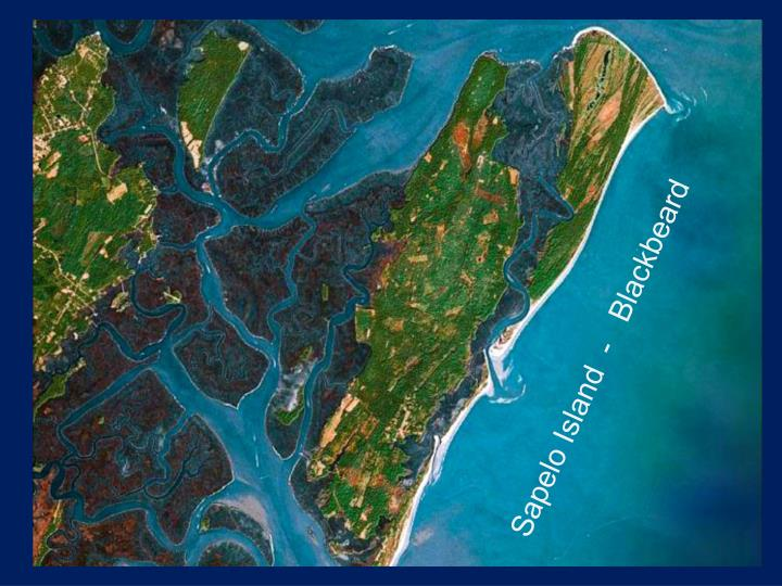 Sapelo Island  -   Blackbeard
