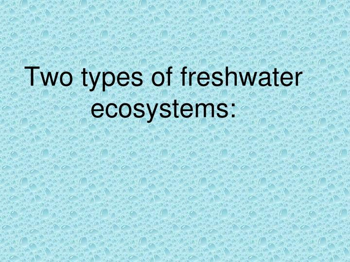 Two types of freshwater ecosystems: