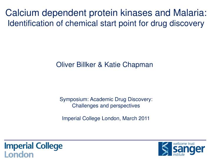 Calcium dependent protein kinases and