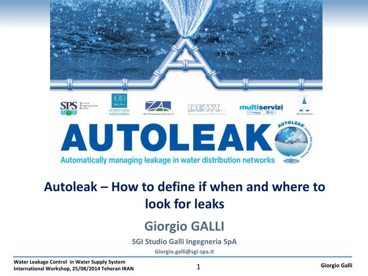 Autoleak how to define if when and where to look for leaks