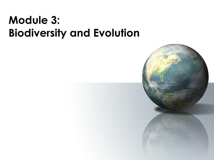 module 3 biodiversity and evolution n.