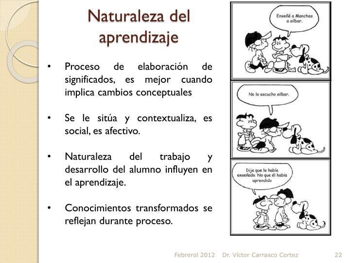 Naturaleza del aprendizaje