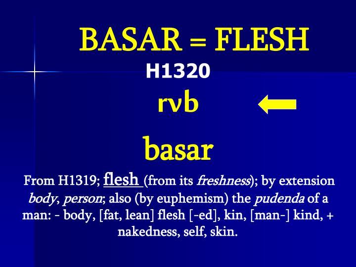 BASAR = FLESH