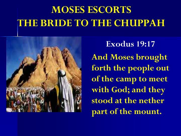 MOSES ESCORTS