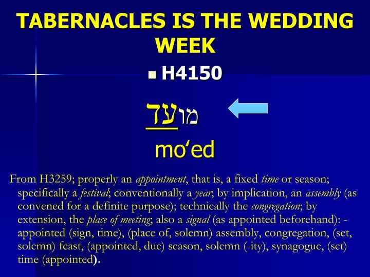 TABERNACLES IS THE WEDDING WEEK