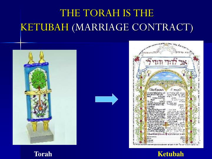 THE TORAH IS THE