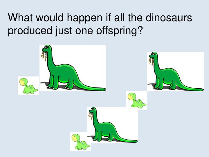 What would happen if all the dinosaurs produced just one offspring?