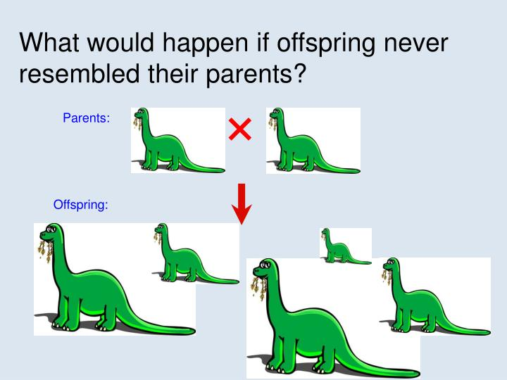 What would happen if offspring never resembled their parents?