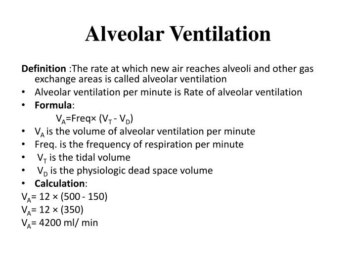 Minute Ventilation Equation Related Keywords & Suggestions