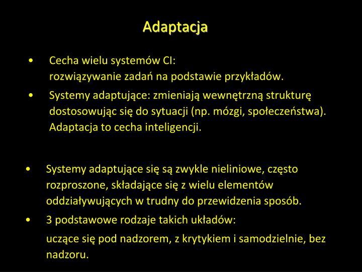 Adaptacja