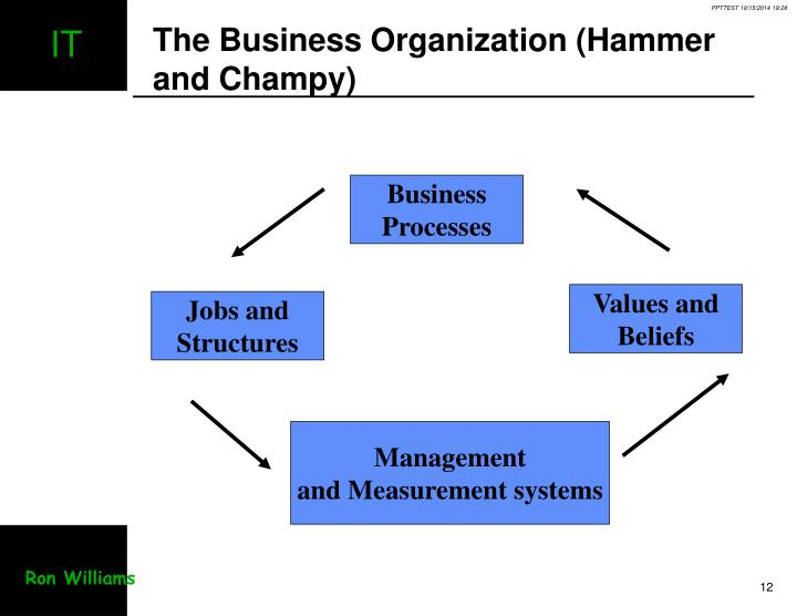 The Business Organization (Hammer and Champy)