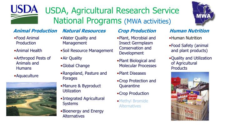 natural resources and products The southwest region has many natural resources livestock, oil, coal, copper, and natural gas are a few important natural resources livestock is a renewable resource.