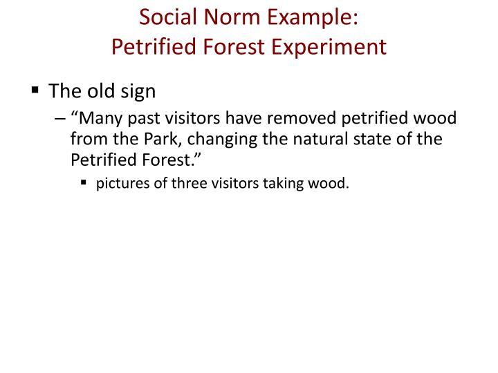 Social Norm Example: