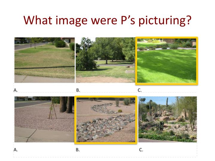 What image were P's picturing?
